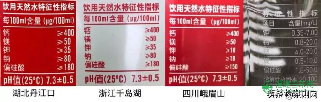 不同的水冲泡普洱生茶,区别究竟有多大?