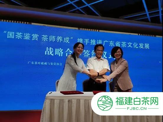 广东茶事活动逐步常态化 珠海茶展9月召开