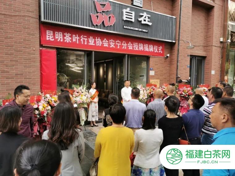 蒲门茶业安宁分会品鉴店·品自在开业仪式圆满举行