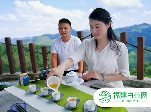 百色凌云有机茶——凌春茶