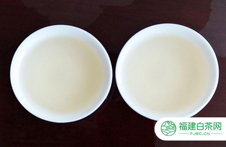 白茶可不可以治疗糖尿病