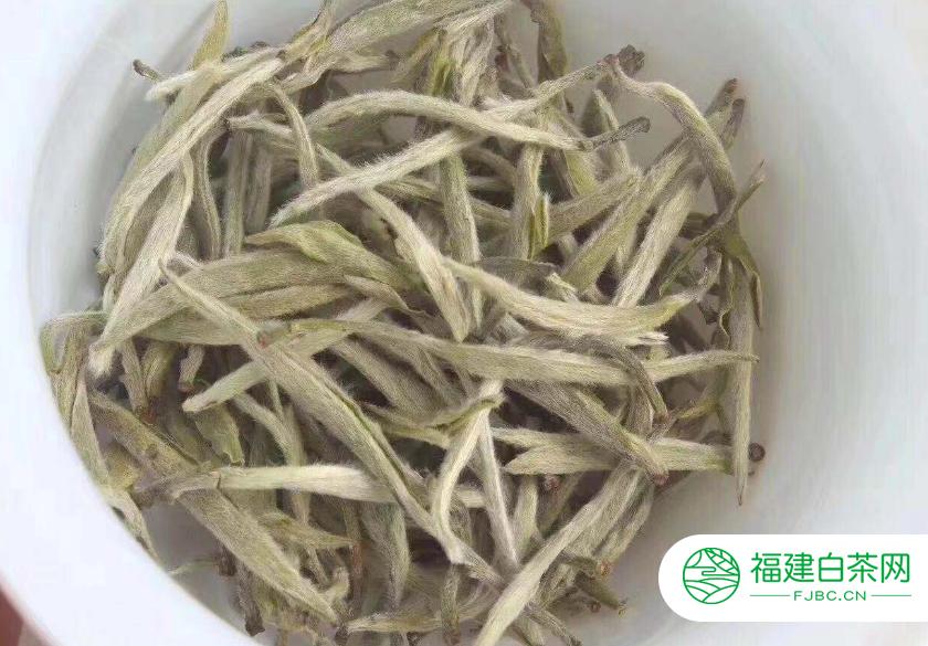 名优白茶是什么茶
