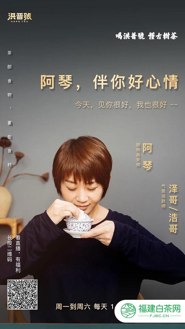 看直播,每天两天,洪普号四大茶艺师轮番论茶,讲茶!