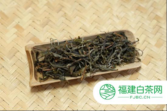 2020年勐麻河普洱茶单株031号强劲型开汤分享