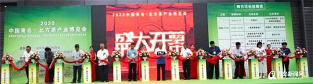 2020中国北方茶叶博览会开幕 万余茗茶供你来选