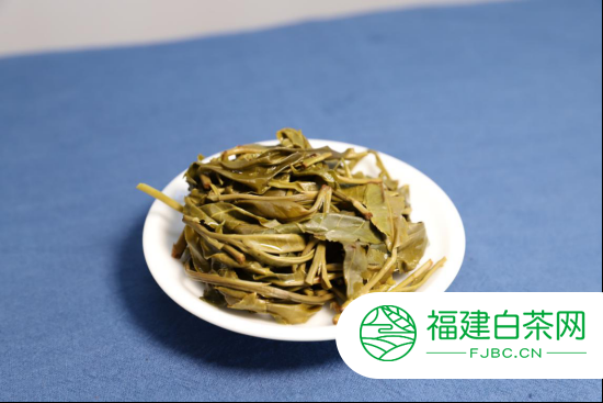 2020年勐麻河普洱茶单株036号柔和型开汤分享