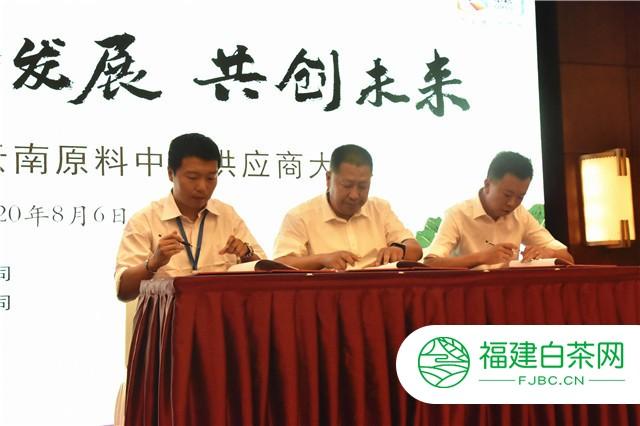 中国茶叶云南原料中心正式揭牌