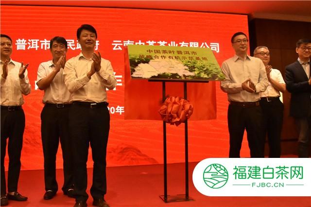 中国茶叶和云南普洱市政府签署合作框架协议