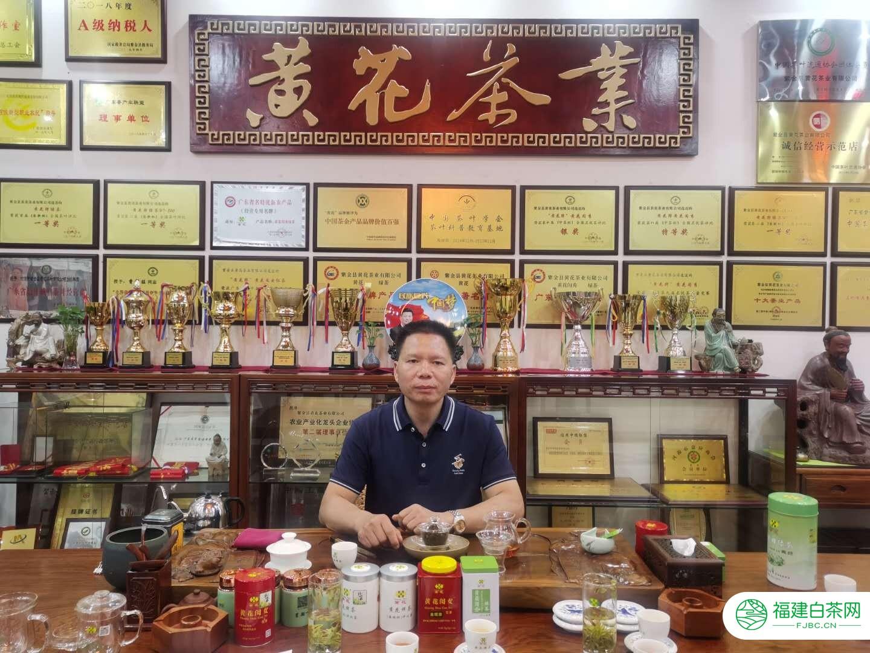 五百年历史传承——黄花牌茶
