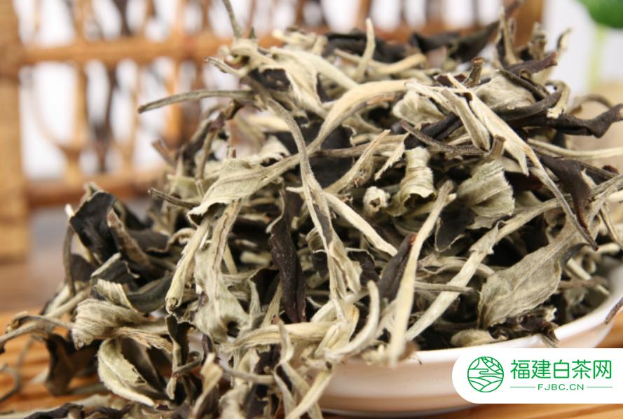 福鼎白茶白牡丹茶多少钱一斤