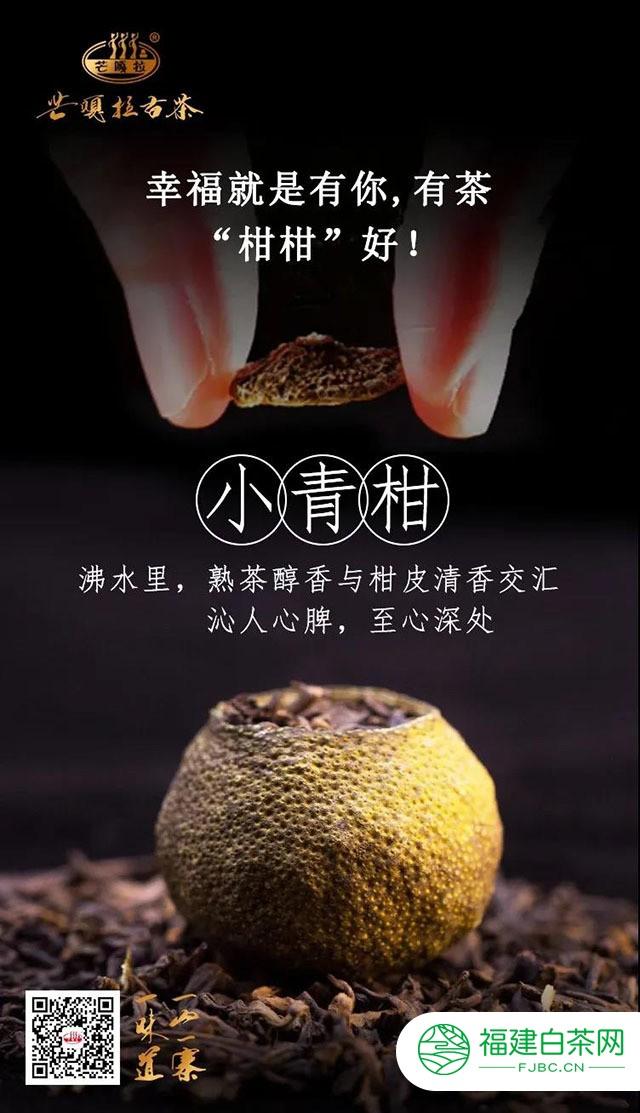 """普洱茶""""拍了拍""""新会柑,是你的""""小心肝""""吗?"""