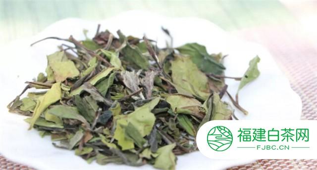 白茶新工艺与传统工艺的区别