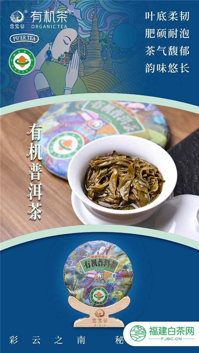 天赐有机 健康畅饮 云元谷2020年有机普洱茶