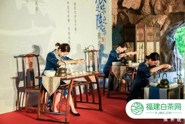 茶香四海,宾客沓来,他们在陈升茶业度过了两天精彩时光