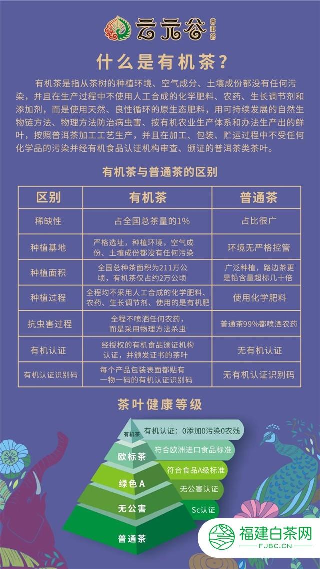 中秋茶礼:云元谷2020年有机生砖,地蕴天养,有机健康