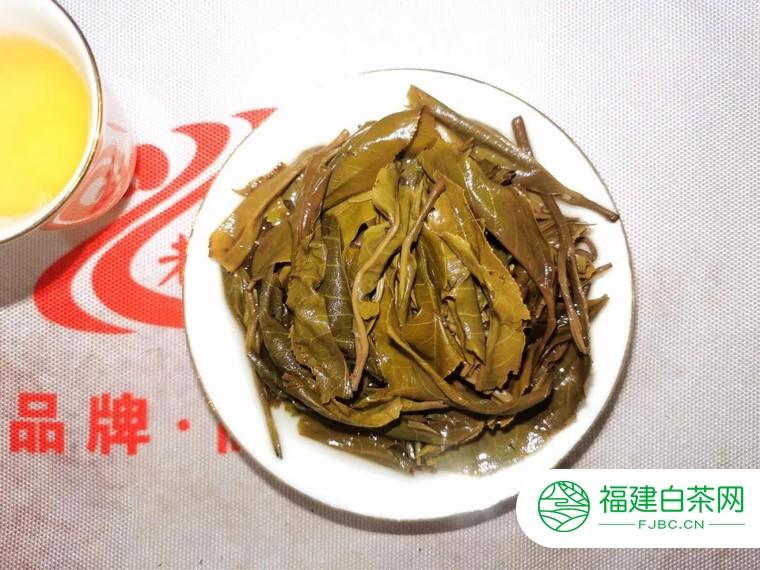 老曼峨曼松贡茶生普新品上市