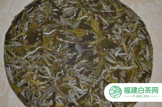 白牡丹白茶可以放几年