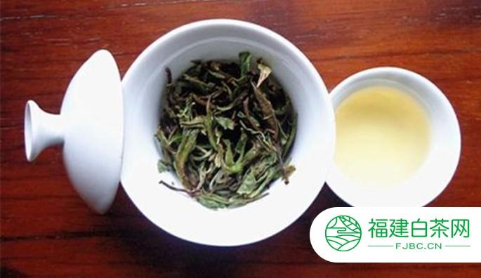 白茶的科学饮用方法