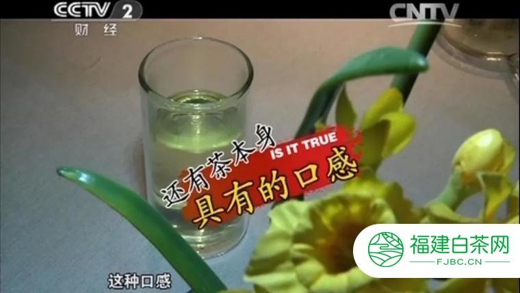茶与健康:隔夜普洱茶真的有害吗?