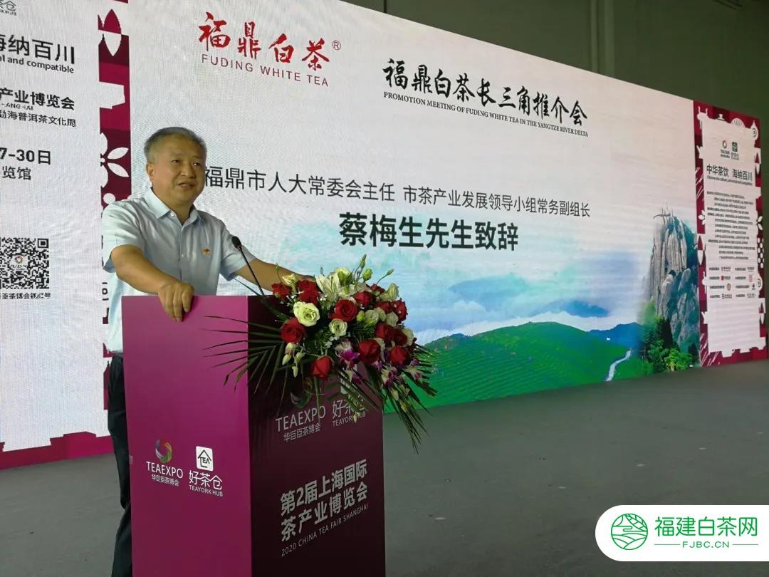 福鼎白茶(上海)文化节系列活动成功举办