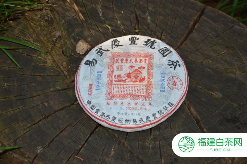 昆明盘龙江边,易武庆丰号古老树根照片