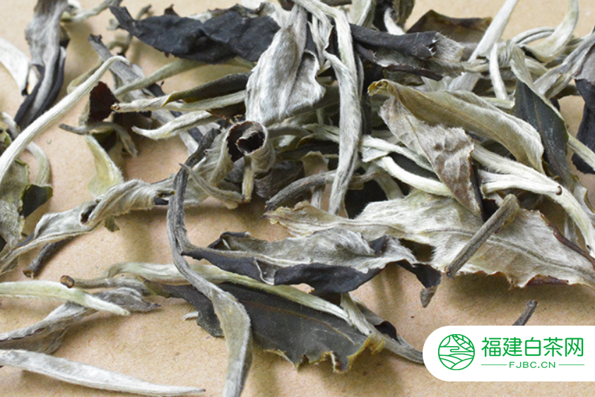 白茶白牡丹是什么种类的茶叶