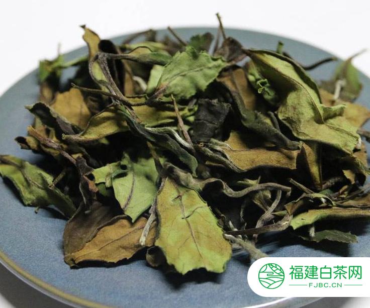 寿眉是什么茶