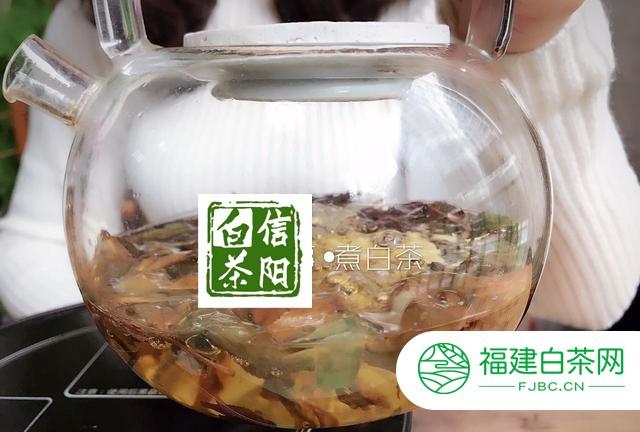 煮信阳老白茶的最佳温度是多少?用冷水煮和热水煮茶,能喝出差别吗?