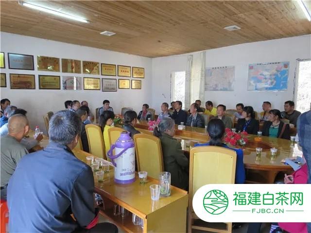 扶贫先锋 产业龙头——湘茶集团
