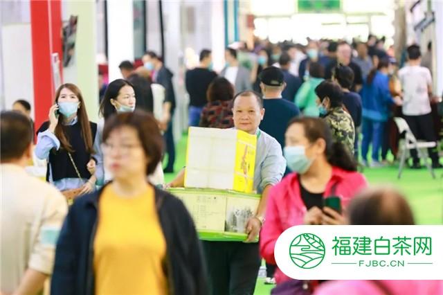 第10届长春茶博会隆重开幕