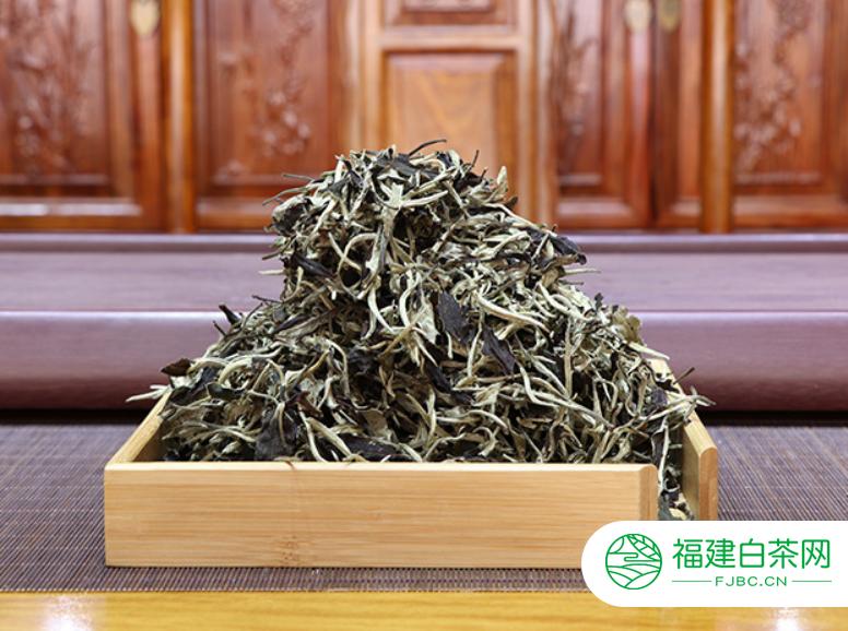 福鼎白茶制作工序简述