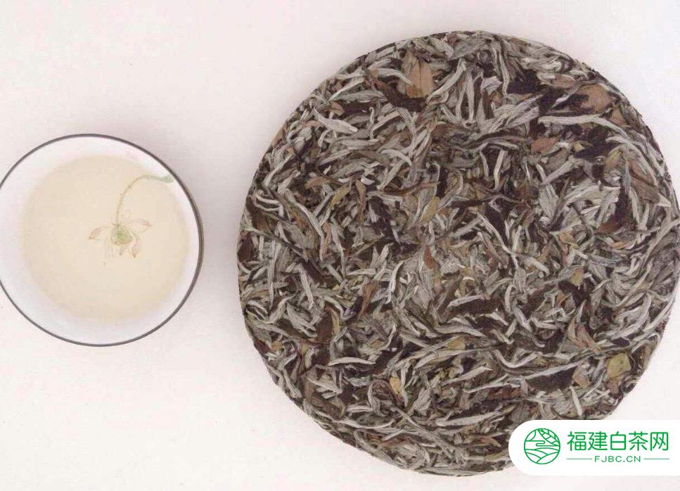 福鼎白茶正常有哪些品牌