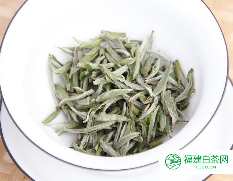 喝福鼎白茶十天能瘦多少