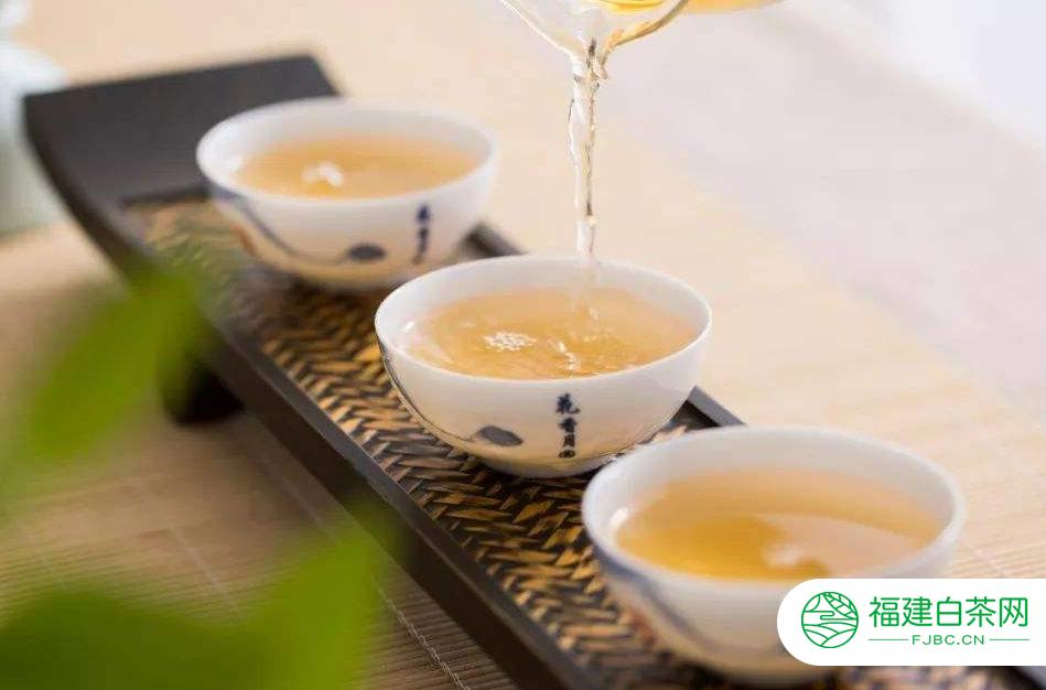 泡制福鼎白茶的水温是多少