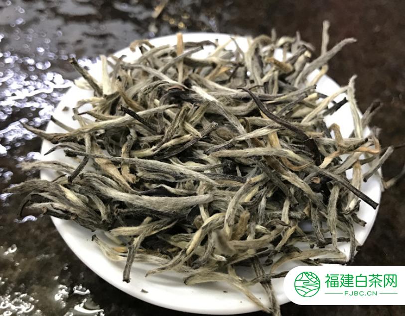 福鼎白茶的功效主要有哪些