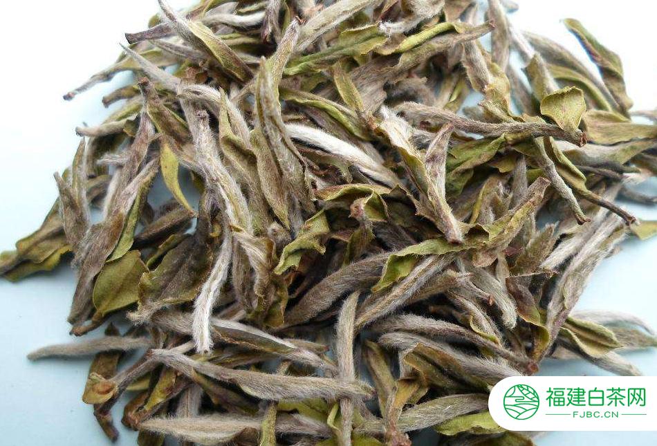 白茶喝了有减肥功效吗