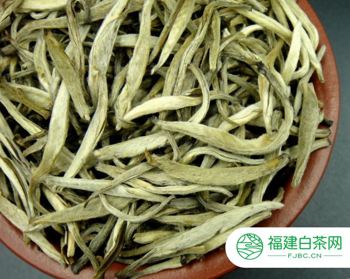 白茶的产地主要是有几个