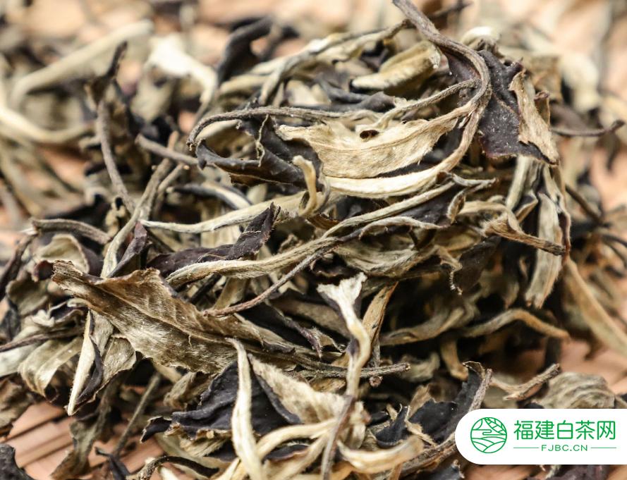 白茶最好的品种有哪些