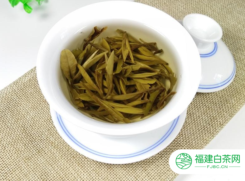 正常白牡丹茶保质期是多久