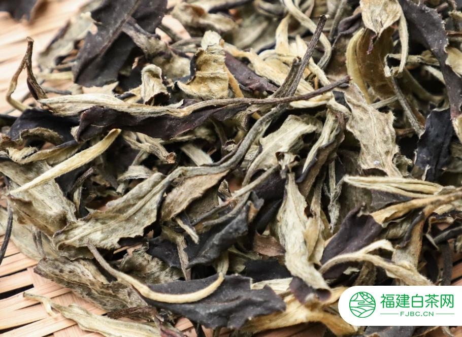 白牡丹茶怎么保存合理