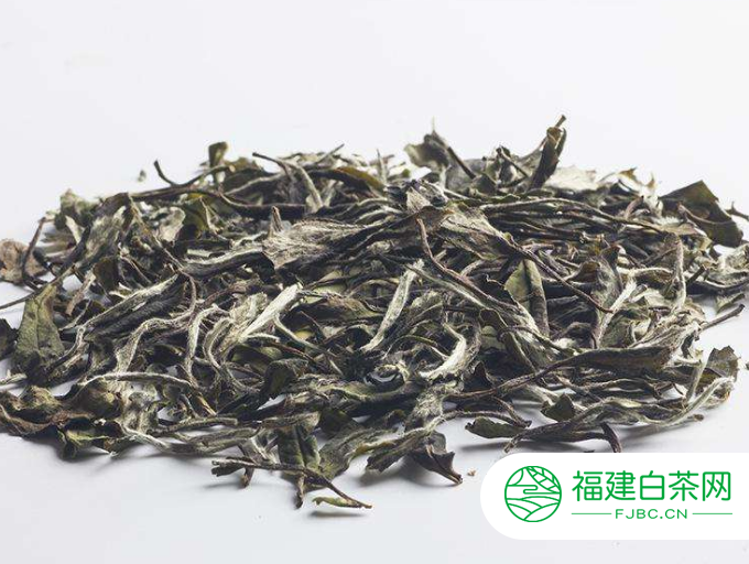白牡丹茶叶是什么茶您知道吗