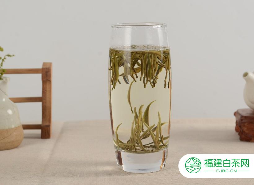 什么是白牡丹茶