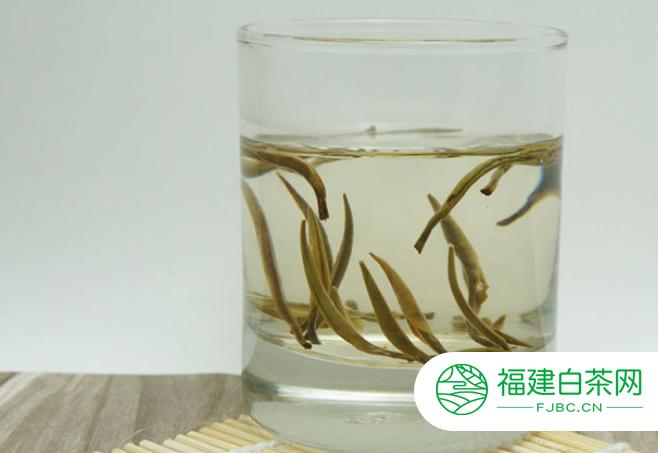 白茶的功效及其营养价值简述