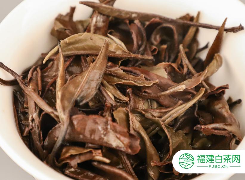 白茶制作技术您了解吗