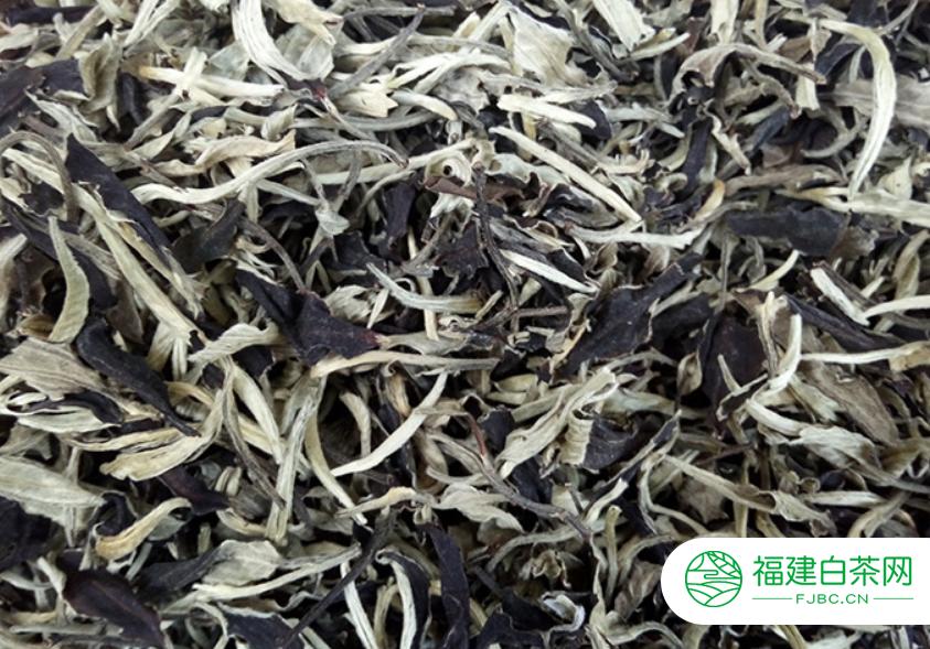 茗茶白茶有药用价值吗