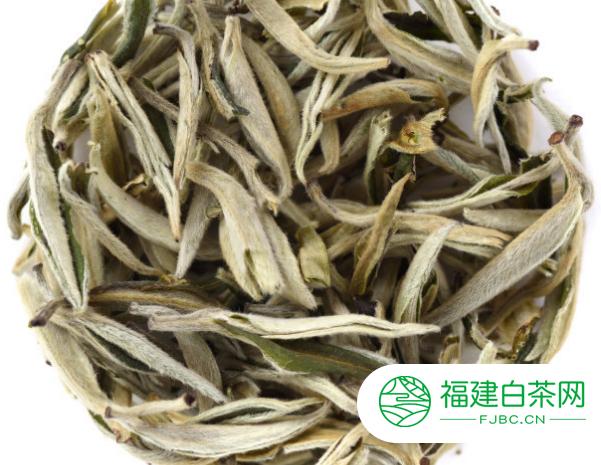 制作白茶的工艺有哪些