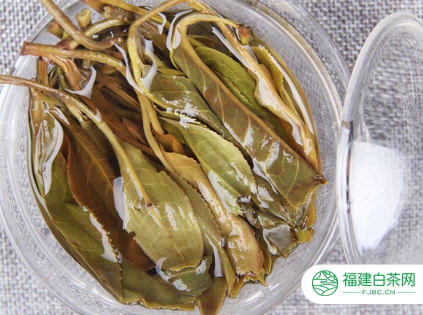 白茶的制作工艺简单介绍