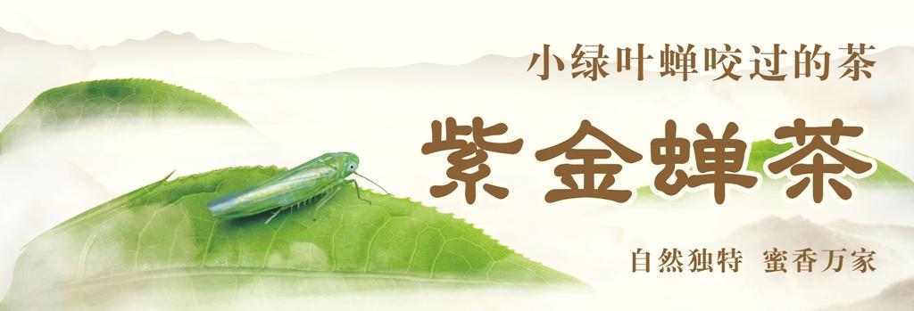 """020年广东十大好春茶结果公布,紫金县茶企大获全胜!"""""""