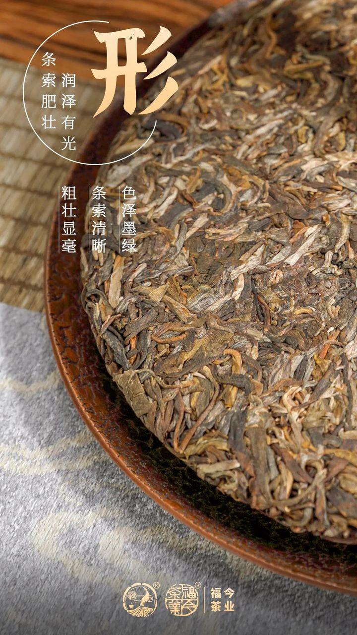 布朗系列丨福今茶业2021年布朗特制青饼正式发售!